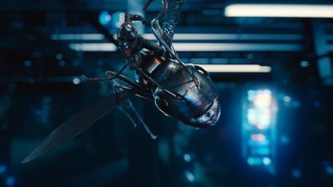 Ant-Man/Scott Lang (Paul Rudd) atop Antony. Photo: Marvel 2015